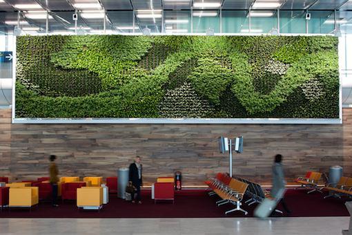 Des murs végétaux en décoration du S4